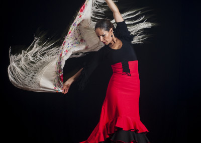 Flamenco_dancer_3467